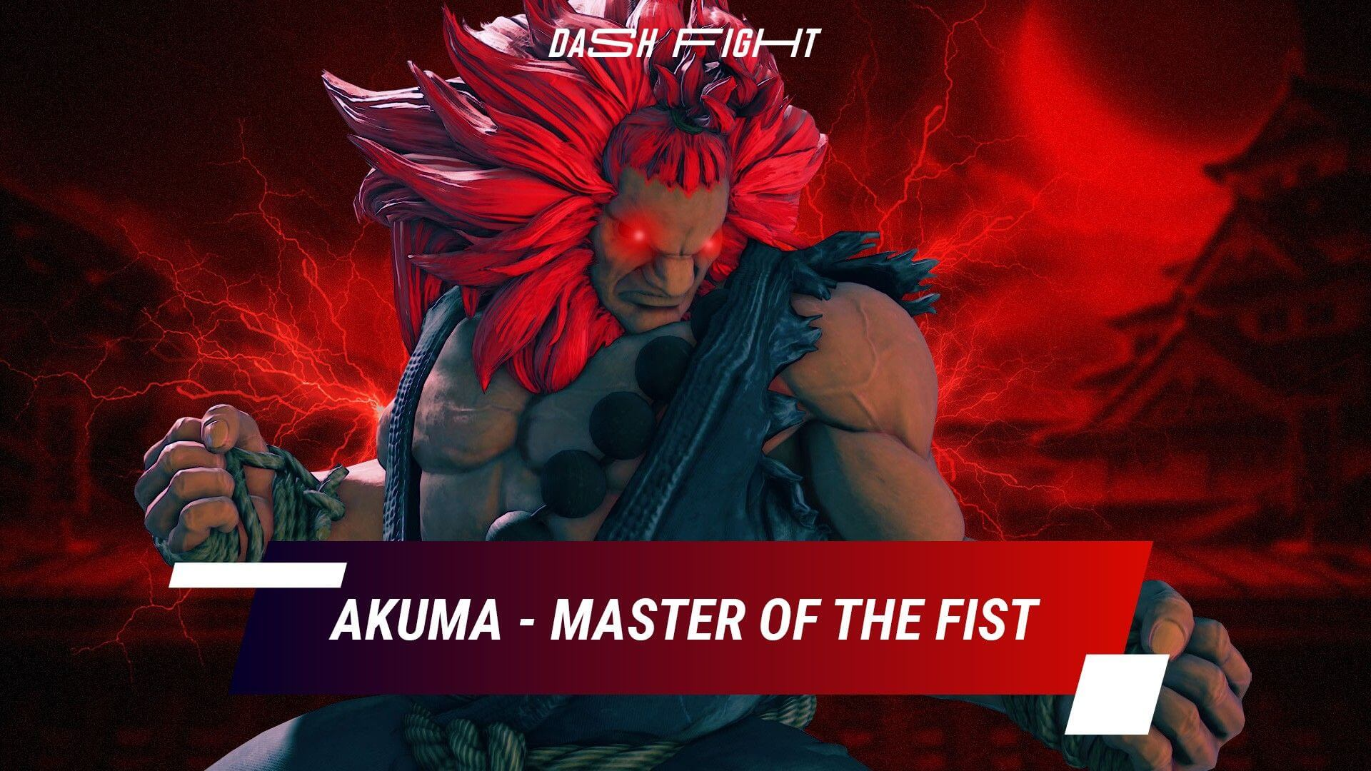 Street Fighter Akuma - Master of the Fist