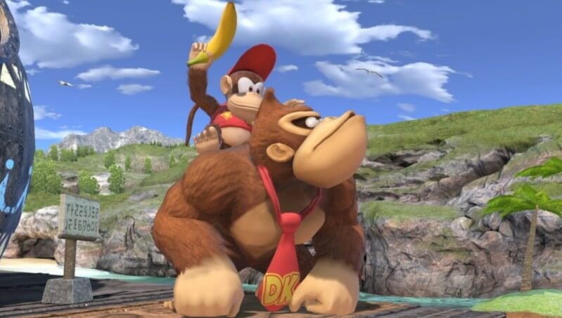 DK and Diddy Kong